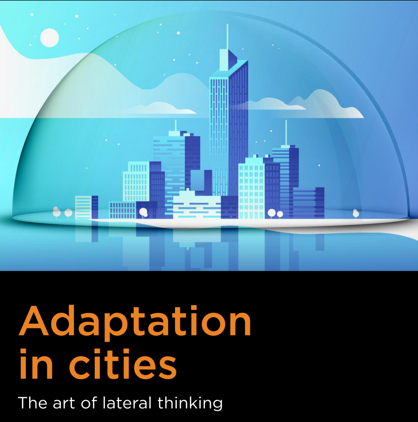 Cover klein Adaptation in cities