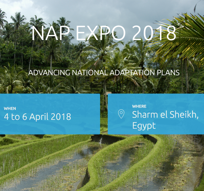 Screenshot NAPEXPO 2018